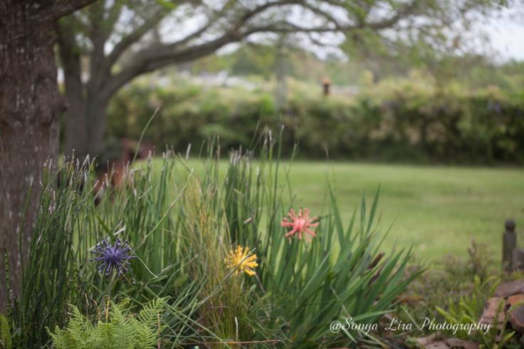 FlowerDecor