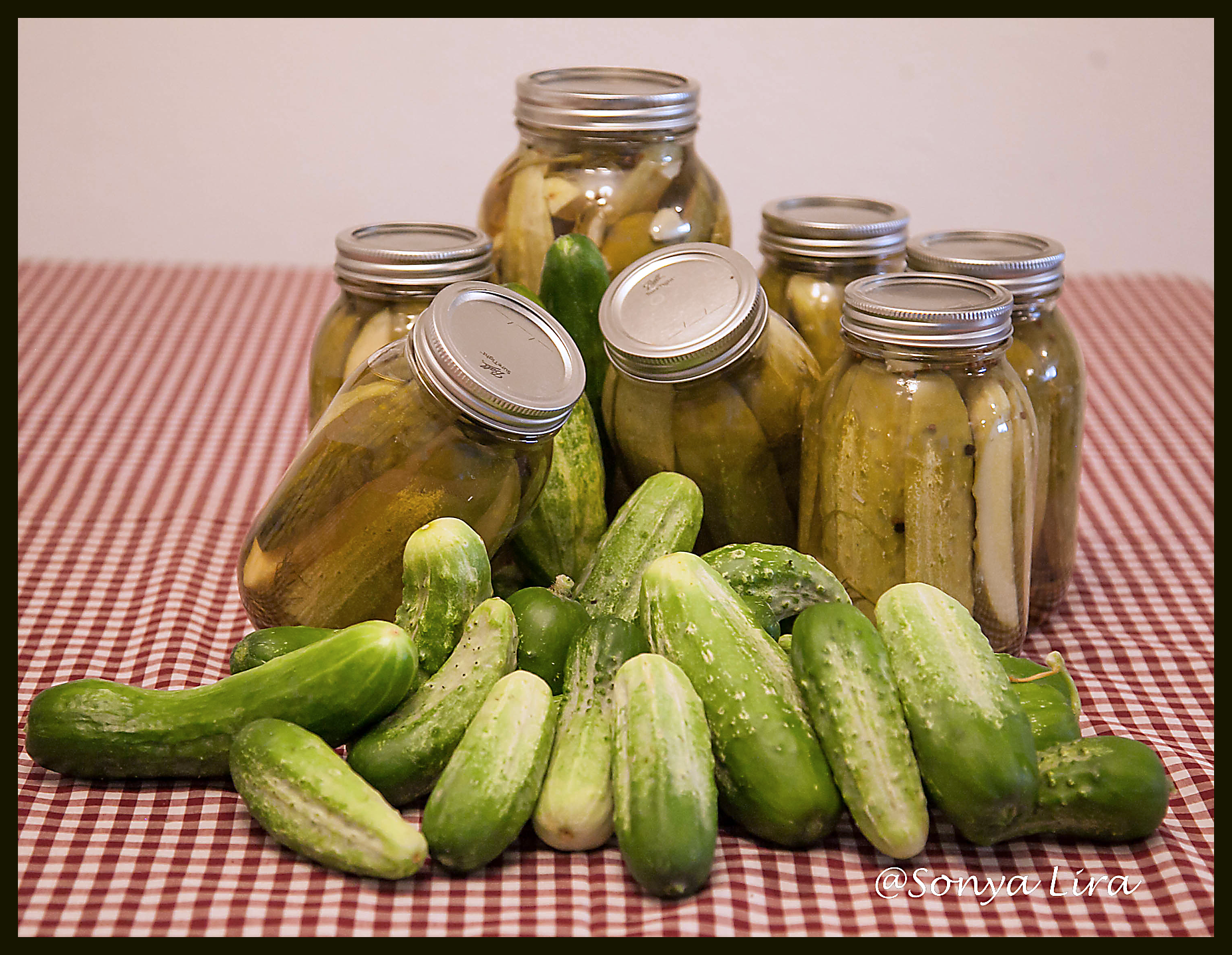 PicklesnCucumbers